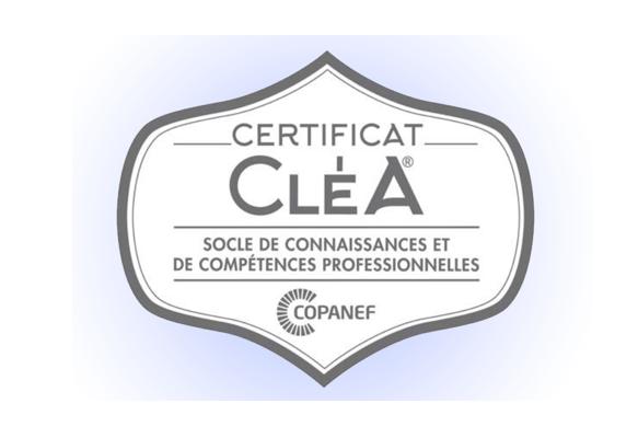 clea-competences-professionnelles-formation